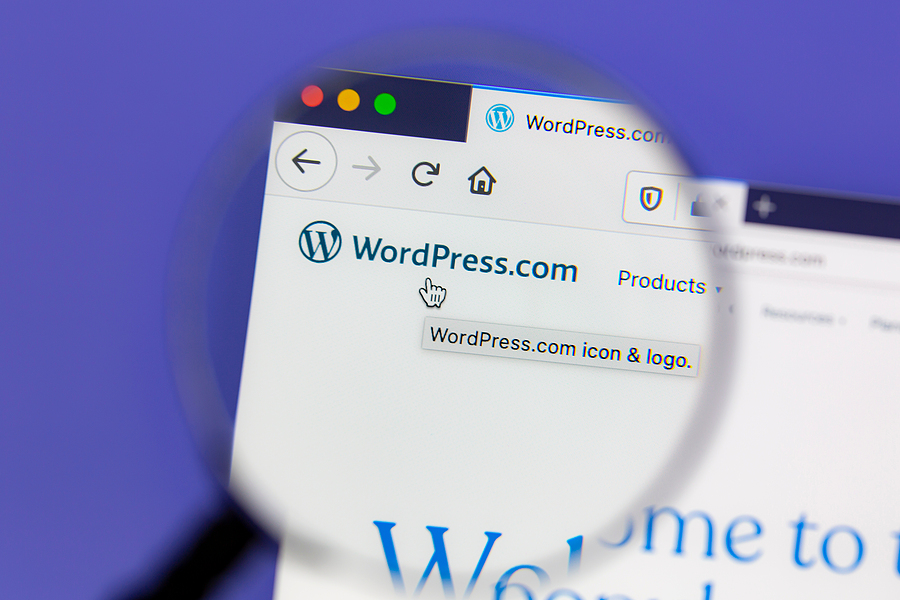5 Best Website Builders for Small Business